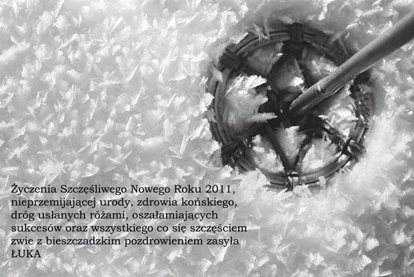 zyczenia-2011-luka