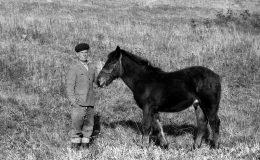 jan-kolodziej-i-konie_1