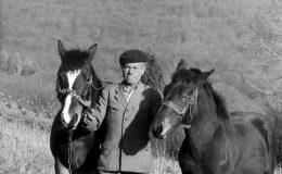 jan-kolodziej-i-konie_20